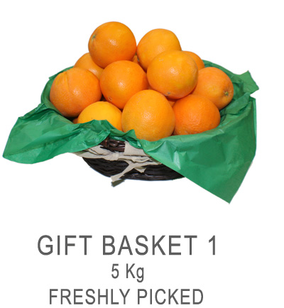 Buy Gift Basket 5kg. Freshly picked from the tree.