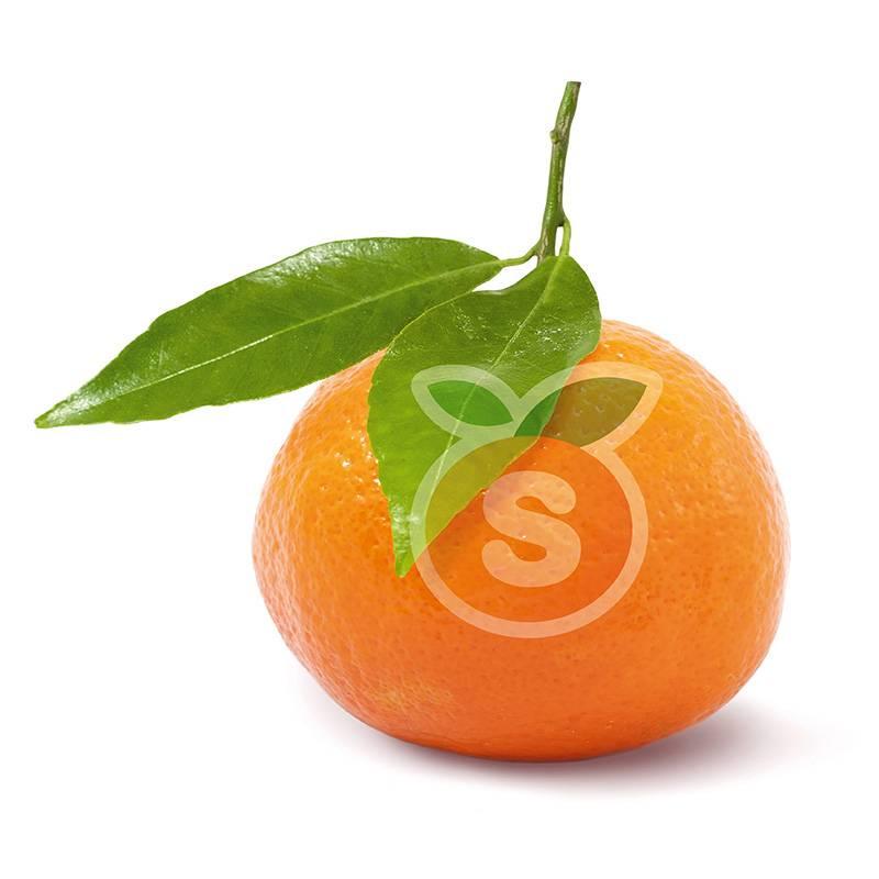 Mandarines Clementines Safor 10kg