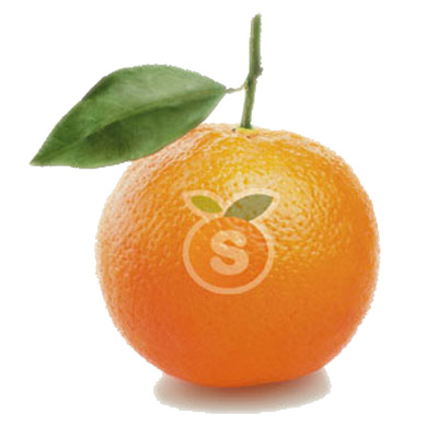 Naranjas Valencianas 10kg